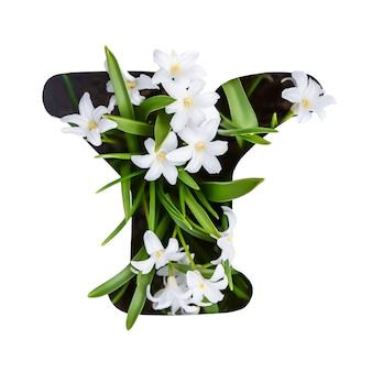 De letter y van het engelse alfabet van kleine witte bloemen