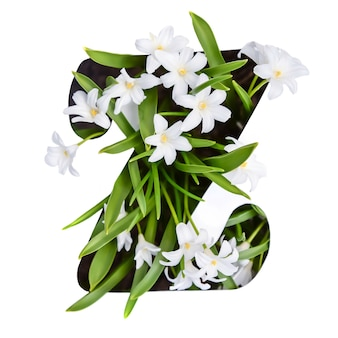 De letter z van het engelse alfabet van kleine witte bloemen