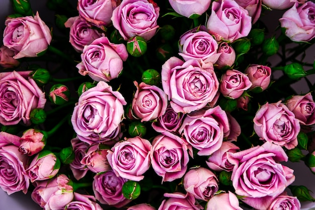 De lichtroze violette bloemen van struikrozen als achtergrond. mooi zomers boeket. regeling met mix bloemen. het concept van een bloemenwinkel. inhoud voor de catalogus