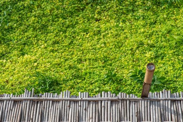 De loopbrug is aangelegd met bamboe. met weelderige groene struiken