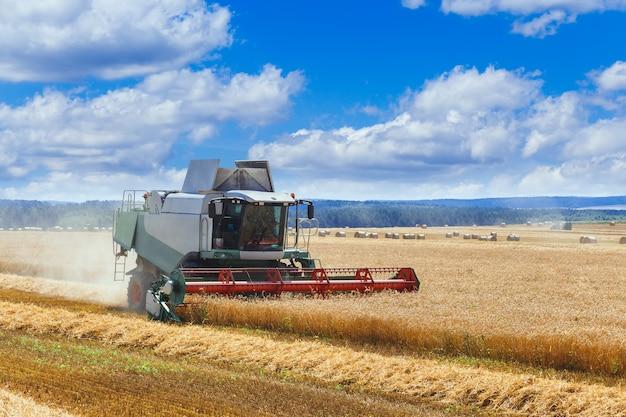 De maaidorser oogst rijpe tarwe in het graanveld. agrarisch werk in de zomer. detail van de maaidorser close-up.