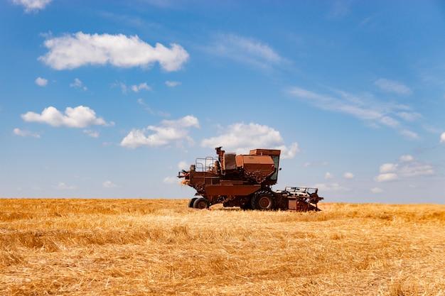 De maaimachine oogst tarwe op het veld.