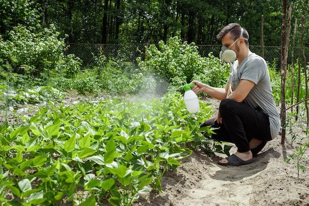 De man in het gasmasker strooit de planten