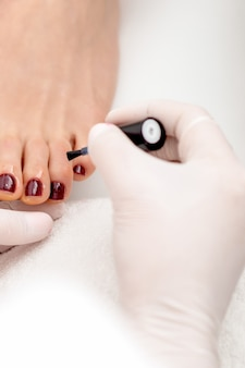 De manicuremeester schildert op vrouwelijke teennagels met kastanjebruine nagellak door borstel die witte handschoenen draagt