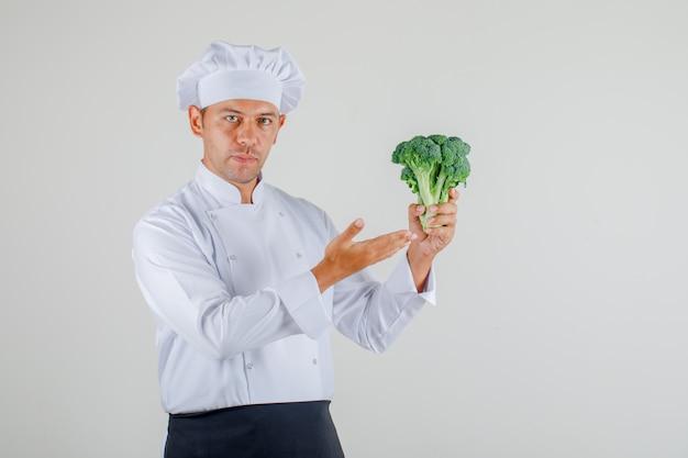 De mannelijke chef-kok die broccoli in zijn hand toont dient eenvormig, schort en hoed in