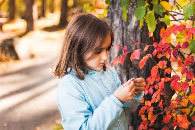 De meisjesherfst in het park, de herfstbladeren en bomen