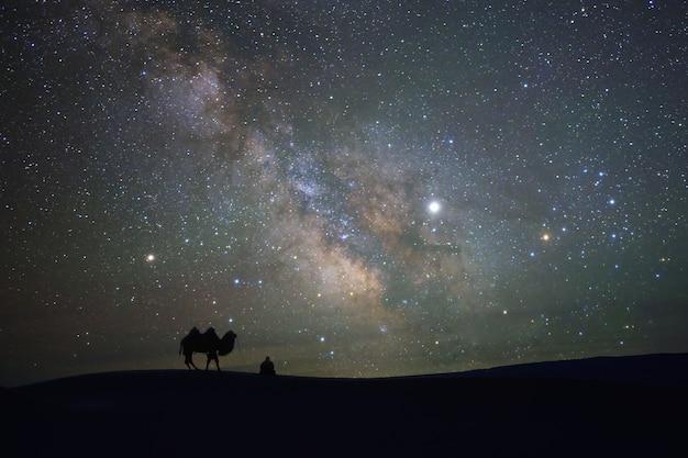 De melkweg bij nacht lange blootstelling over kameel bij gobiwoestijn mongolië