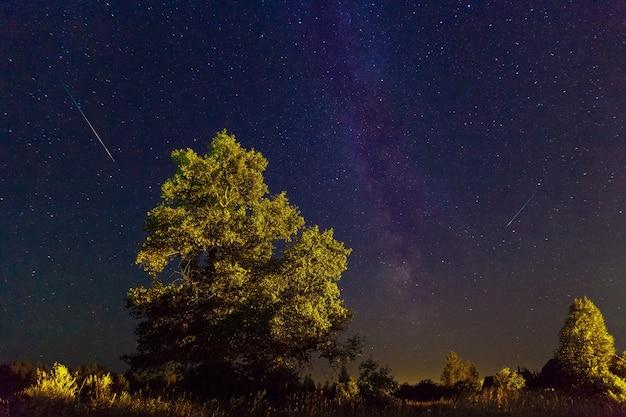 De melkwegaugustus zomernachthemel met sterren starfall de vallende perseïden