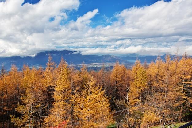 De mening over het natioanlpark fuji in de herfst, japan
