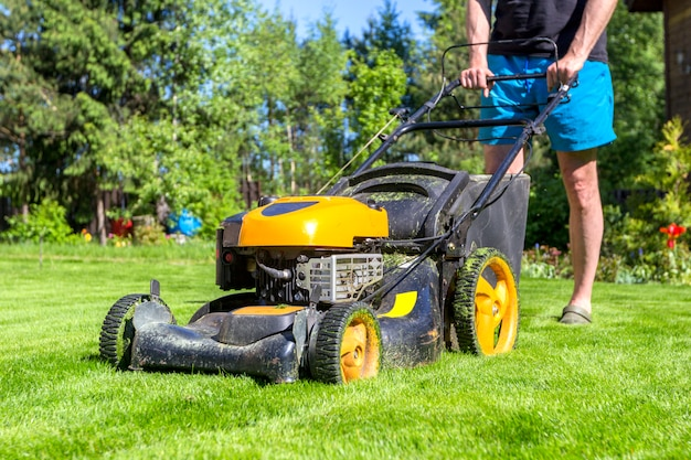 De mens maait gras met grasmaaimachine op zonnige ochtend in tuin.