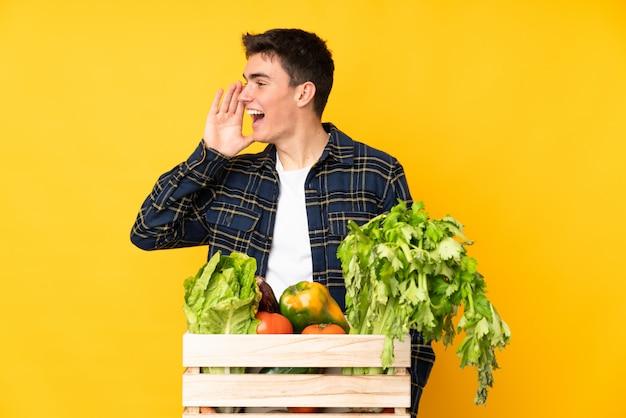 De mens van de tienerlandbouwer met vers geplukte groenten in een doos die met wijd open mond schreeuwen