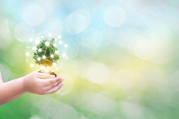 De menselijke handen die van het ecologiekind grote installatieboom met op vaag achtergrondwereldmilieu houden van van de wereld