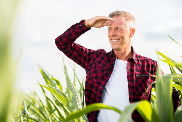De middenleeftijdsmens die van smiley weg in cornfield kijkt
