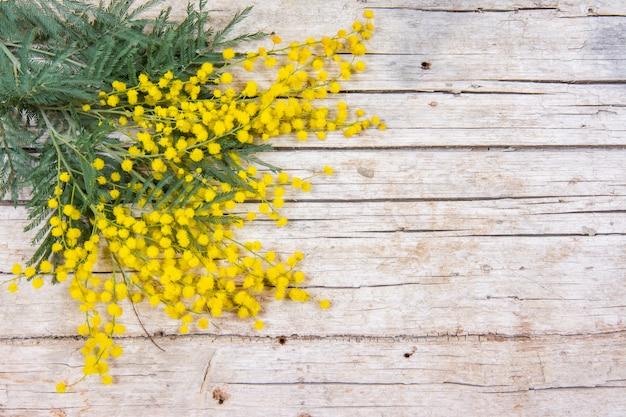 De mimosa bloeit kader op houten achtergrond.