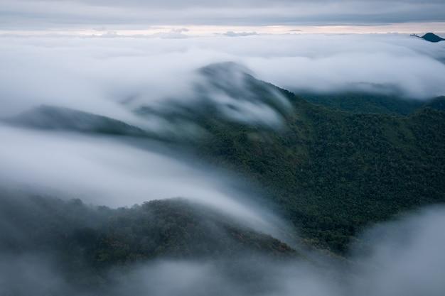 De mist bedekte het bos in de ochtend in khun yuam, thailand