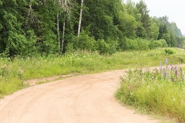 De modderige weg door het met bloemen bedekte veld naar het bos