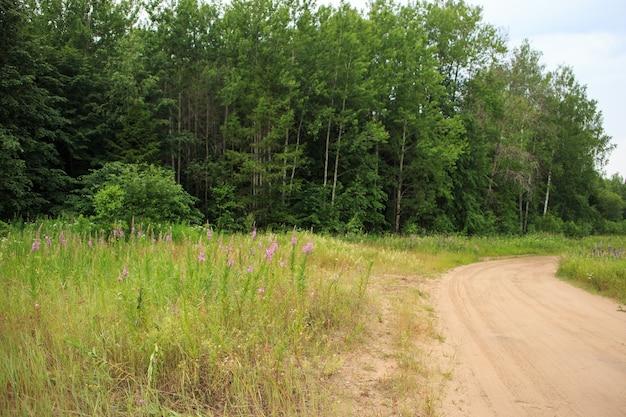 De modderige weg door het met bloemen bedekte veld naar het bos.
