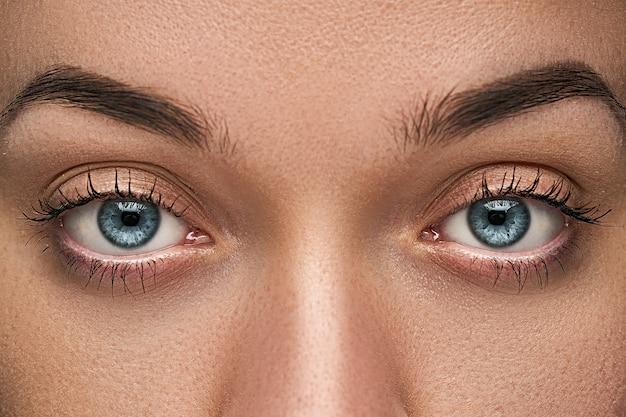 De mooie blauwe vrouwelijke ogen met wimpers sluiten omhoog