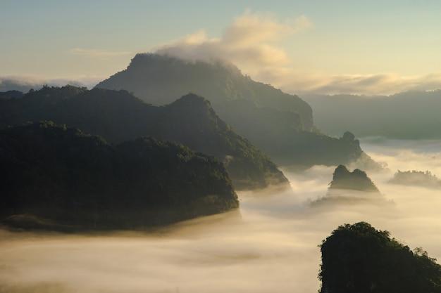 De mooie landschapsmening van phu lung-ka bospark tijdens de zonsopgang in phayao-provincie van thailand wordt gevestigd dat.