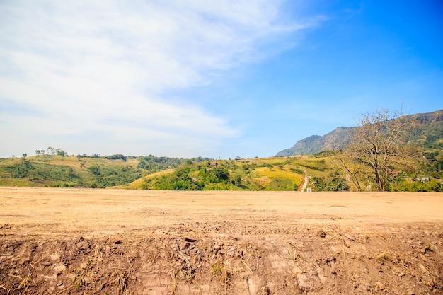 De mooie mening van de grondkant van de weg met groene aard en blauwe hemelachtergrond.