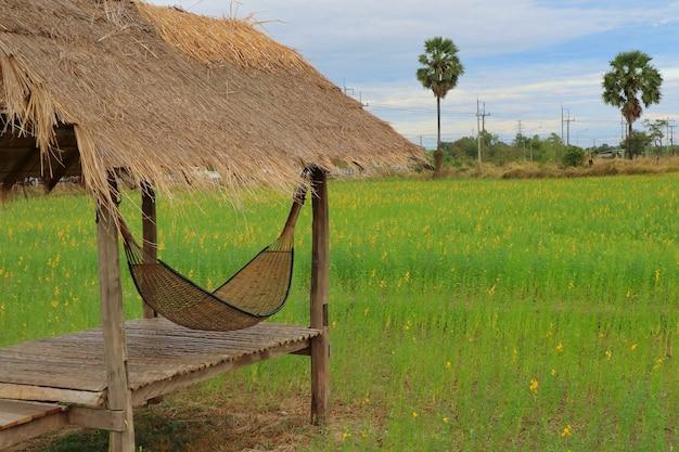 De mooie mening van houten hut in het tropische landbouwbedrijf met sunn-hennep bloeit gebieden in de zomertijd.