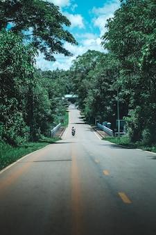 De motorfiets op de weg in het bos