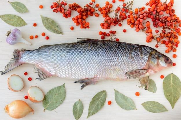 De muksun (coregonus muksun) is een soort witvis die wijdverspreid is in de siberische arctische wateren. witte vis omgeven door specerijen en smaakmakers.