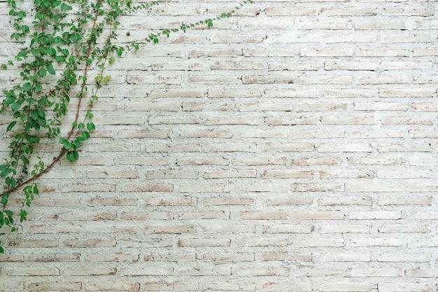 De muur is gemaakt van baksteen en vervolgens op wit geschilderd.