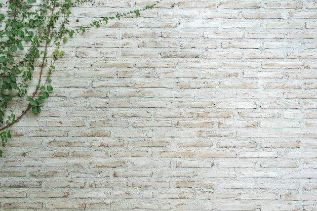 De muur is gemaakt van baksteen en vervolgens wit geverfd.
