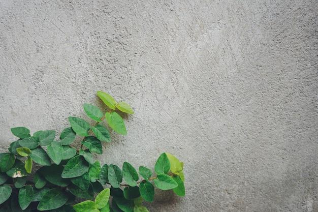 De muur is gemaakt van baksteen en vervolgens wit geverfd
