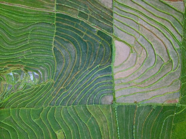 De natuurlijke schoonheidstextuur van indonesië van luchtfoto's tegelijkertijd