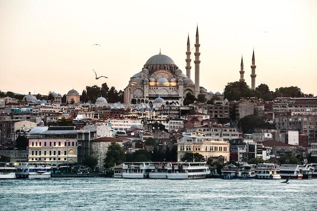 De oceaan van istanboel met cruiseschip