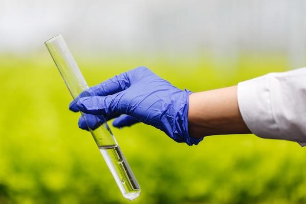 De onderzoeker houdt een reageerbuis met water in dient blauwe handschoen in