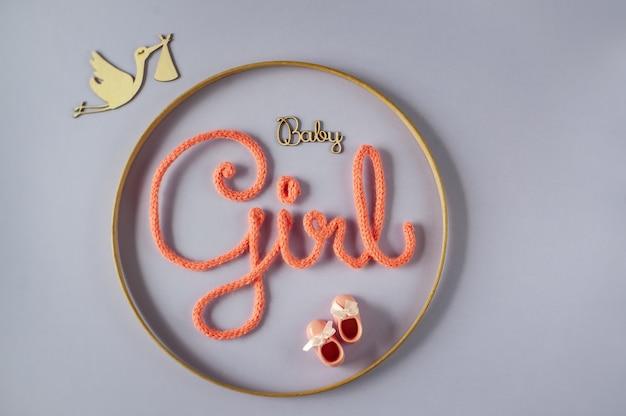 De ooievaar die de boodschap overbrengt op een gender-onthullingsfeestje. aankondiging van de geboorte van een babymeisje.