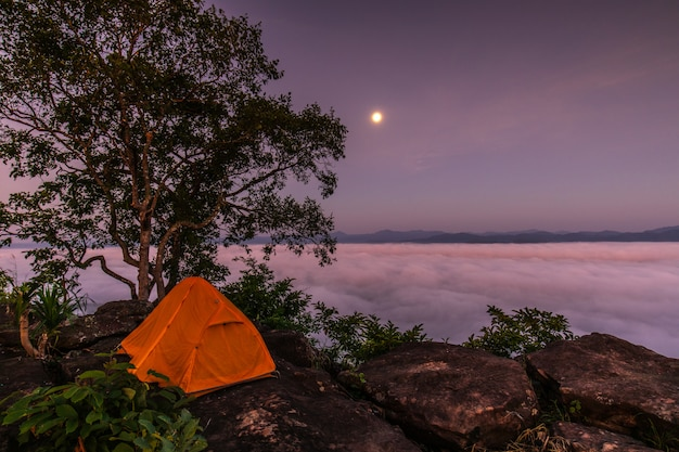 De oranje tent van de reiziger op de hoge berg en de zee van mist.