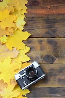 De oude camera onder een reeks vergeling gevallen herfstbladeren
