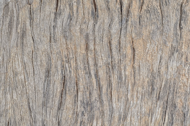 De oude houten decoratieve achtergrond van het de raads uitstekende paneel van de plankoppervlaktetextuur