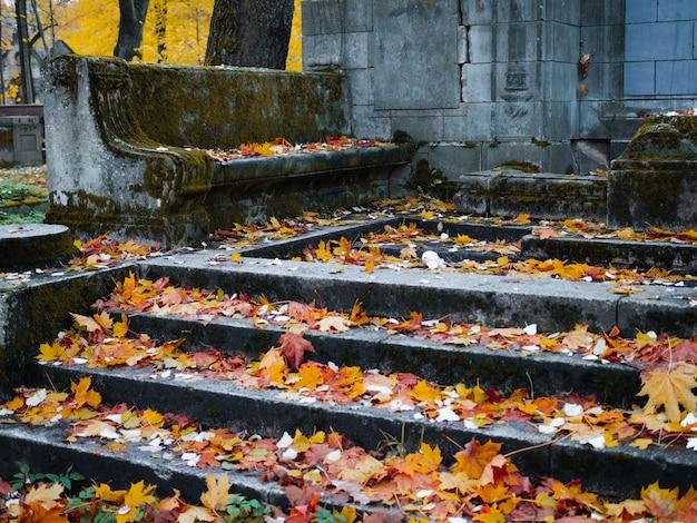 De oude katholieke begraafplaats in de herfst verlaten graven