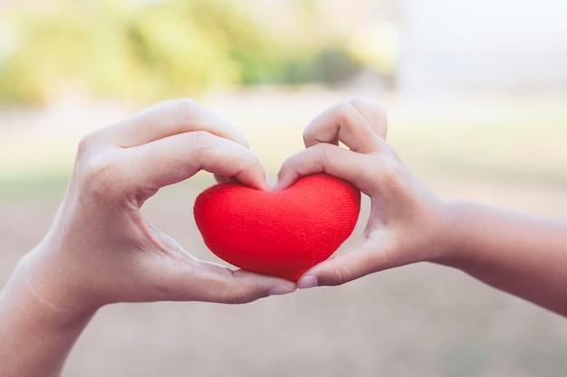 De ouder en het kind die rood hart in handen houden en maken hartvorm