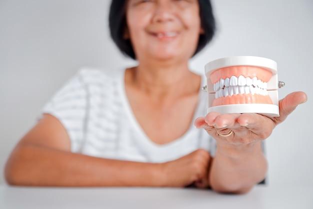 De oudere aziatische vrouwen houden een kunstgebitmodel vast