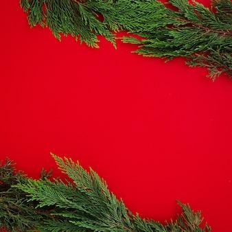 De pijnboombladeren van kerstmis op rode achtergrond met copyspace