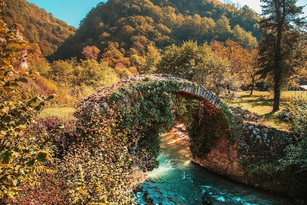 De pittoreske oude besletsky-brug (of de brug van koningin tamara) in de herfst. abchazië, sukhum