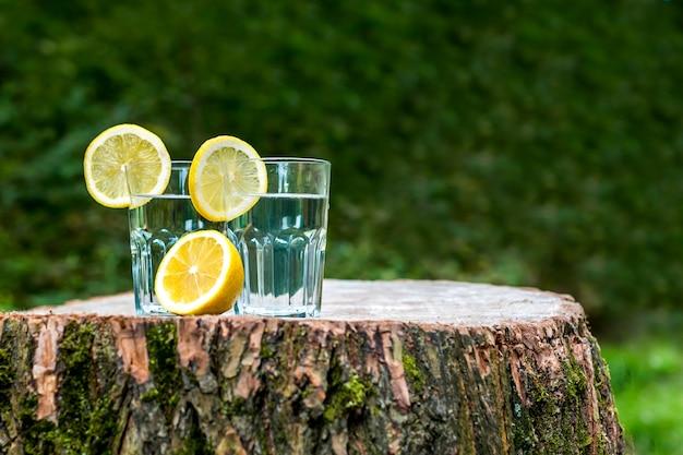 De plakjes citroen op een twee glazen water