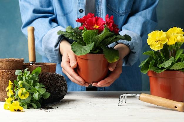 De pot van de vrouwengreep, witte houten lijst met bloemen en tuingereedschap, vooraanzicht