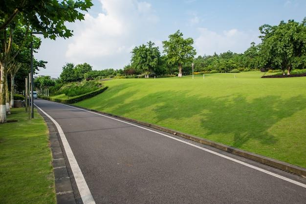 De prachtige weg is omgeven door groen