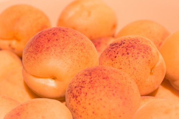 De rijpe sappige abrikozen sluiten omhoog