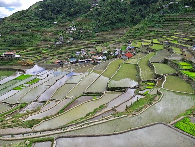 De rijstterrassen in banaue, filippijnen