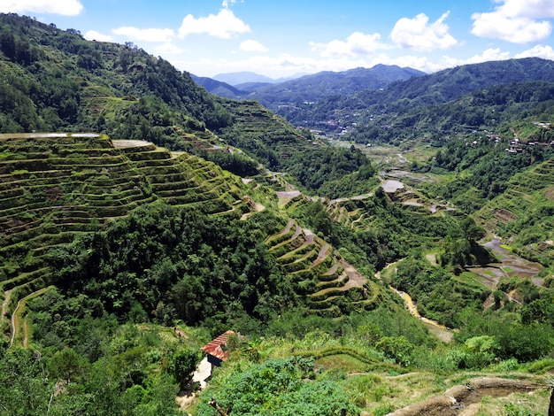 De rijstterrassen in banaue