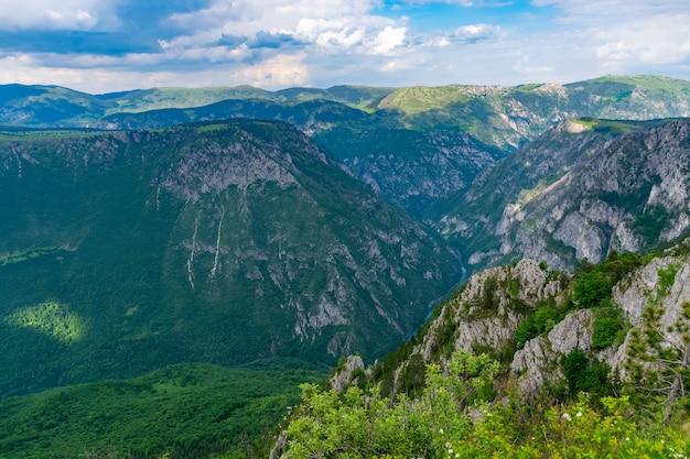 De rivier de tara stroomt op de diepte van de kloof tussen de bergen