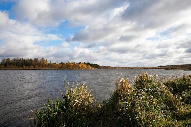De rivier en het bos, herfst fotografeerde de rivier de neman, gelegen in wit-rusland, het herfstseizoen, het bos en de bomen werden geel op de achtergrond, bewolkt weer